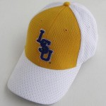 Mesh Fitted Baseball Cap